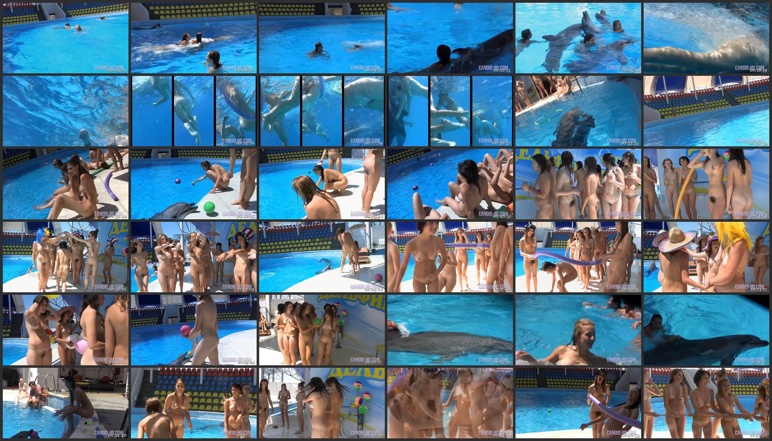 Candid-HD.com-Amazing Dolphin Encounter - Thumbnails