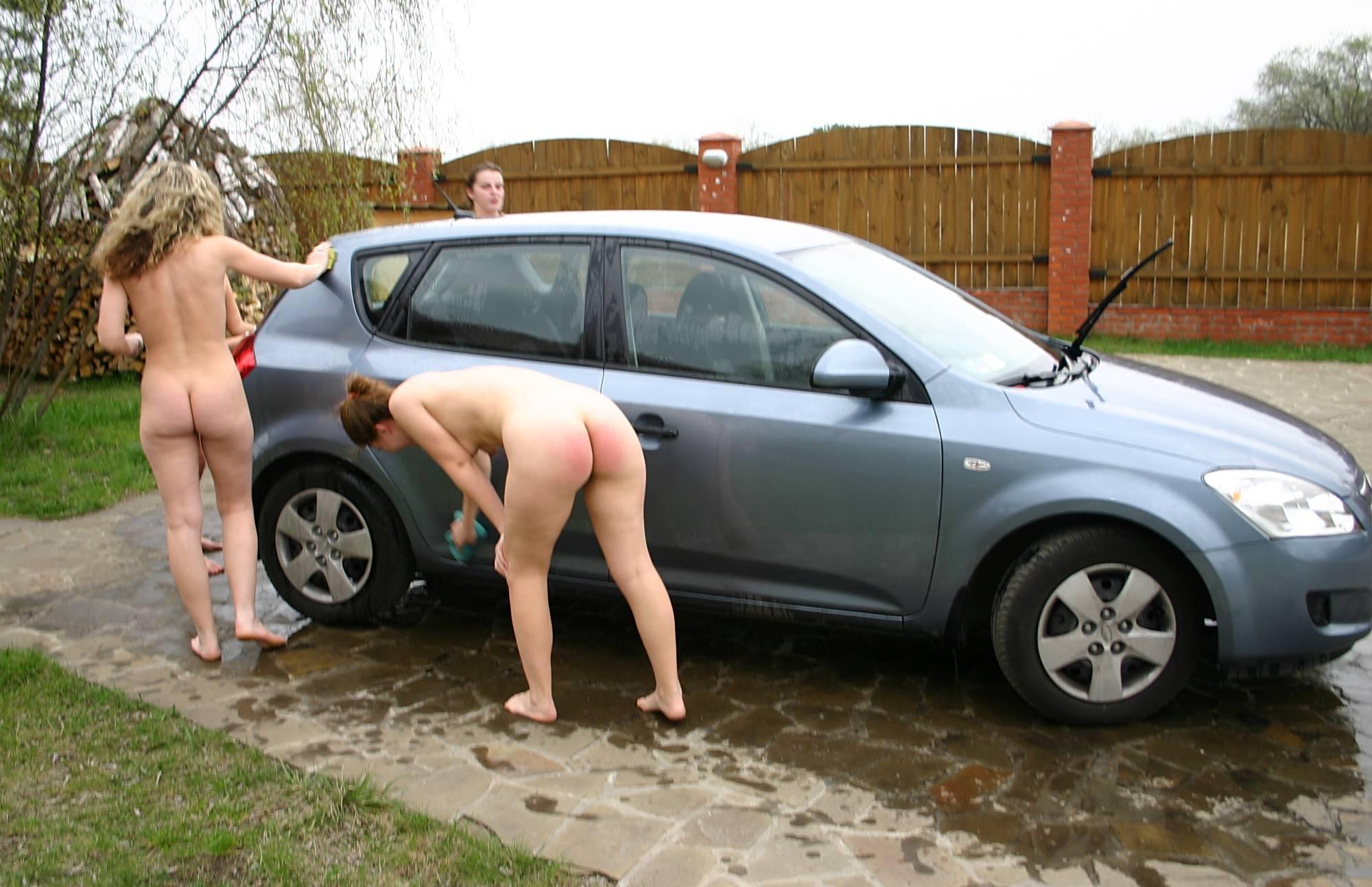Carwash Car Profiles One - 2