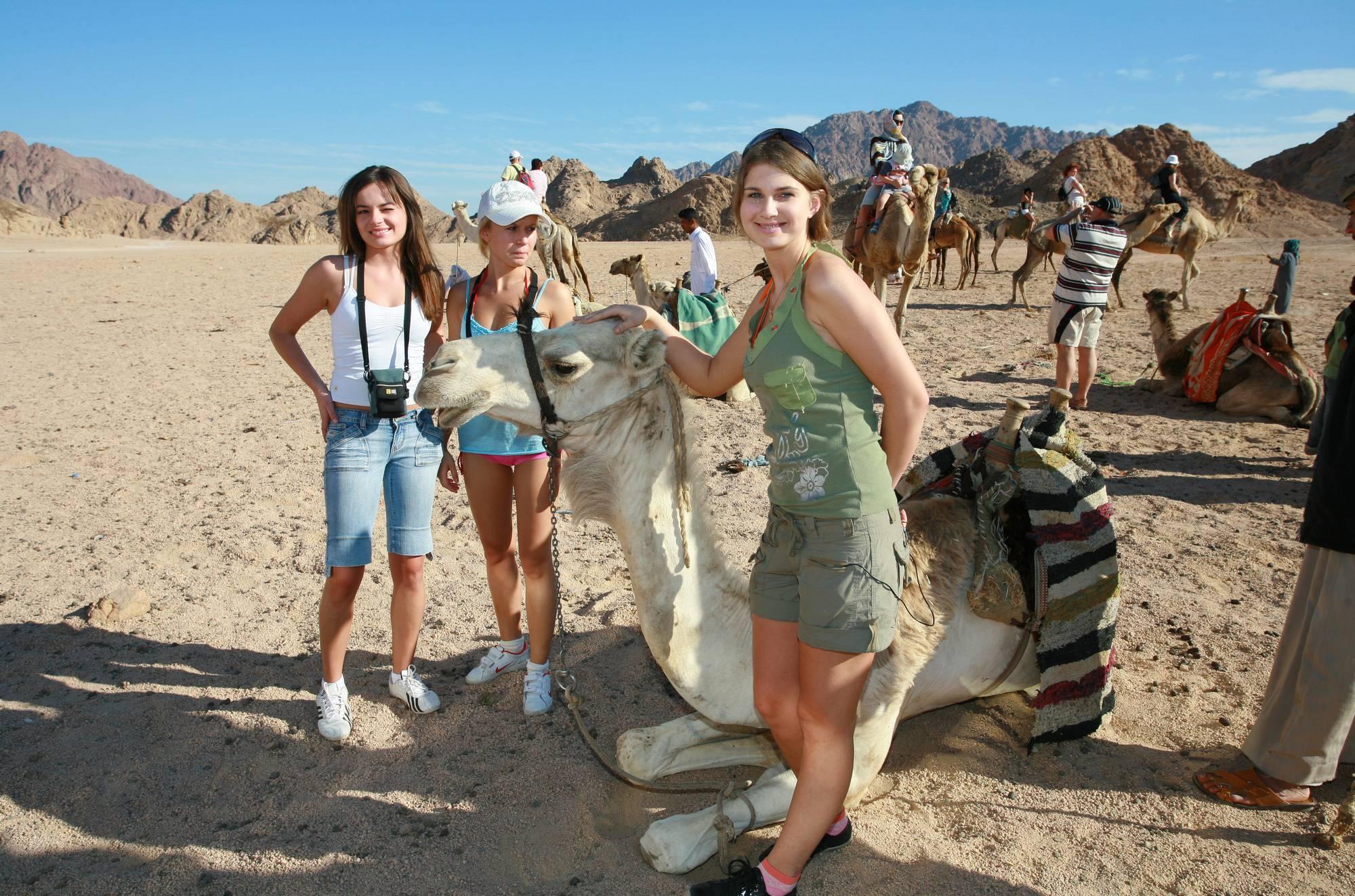 Egyptian Camel Day Tour - 1