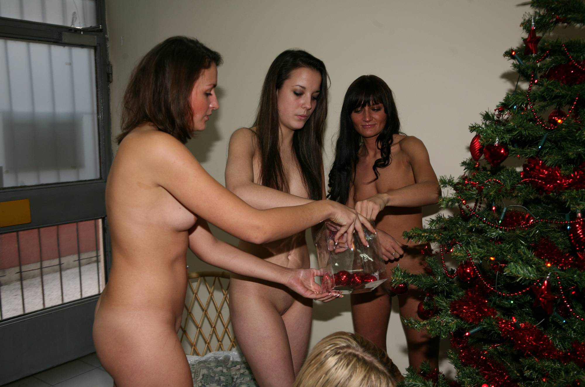 Purenudism Photos-Hair Salon Christmas Tree - 2