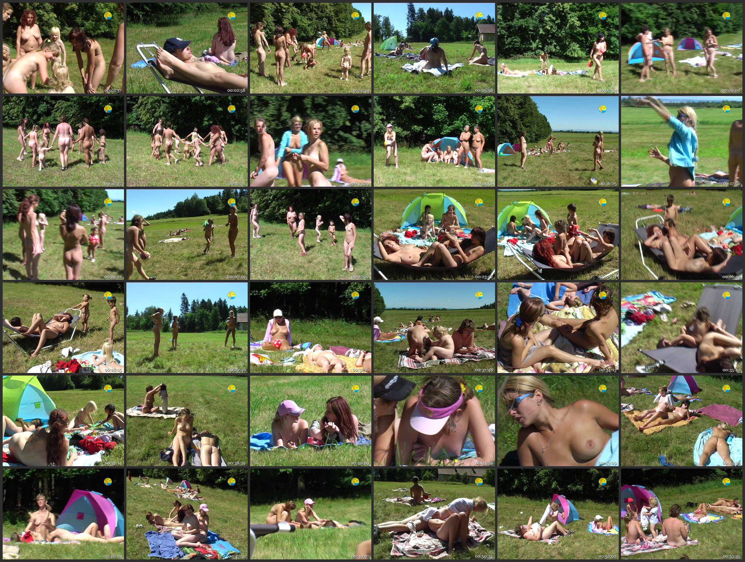 On a Meadow by the Forest - Thumbnails