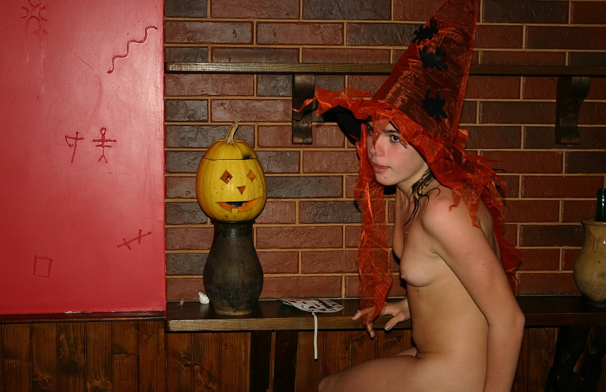 Purenudism Gallery-A Wild Wild West Party - 4