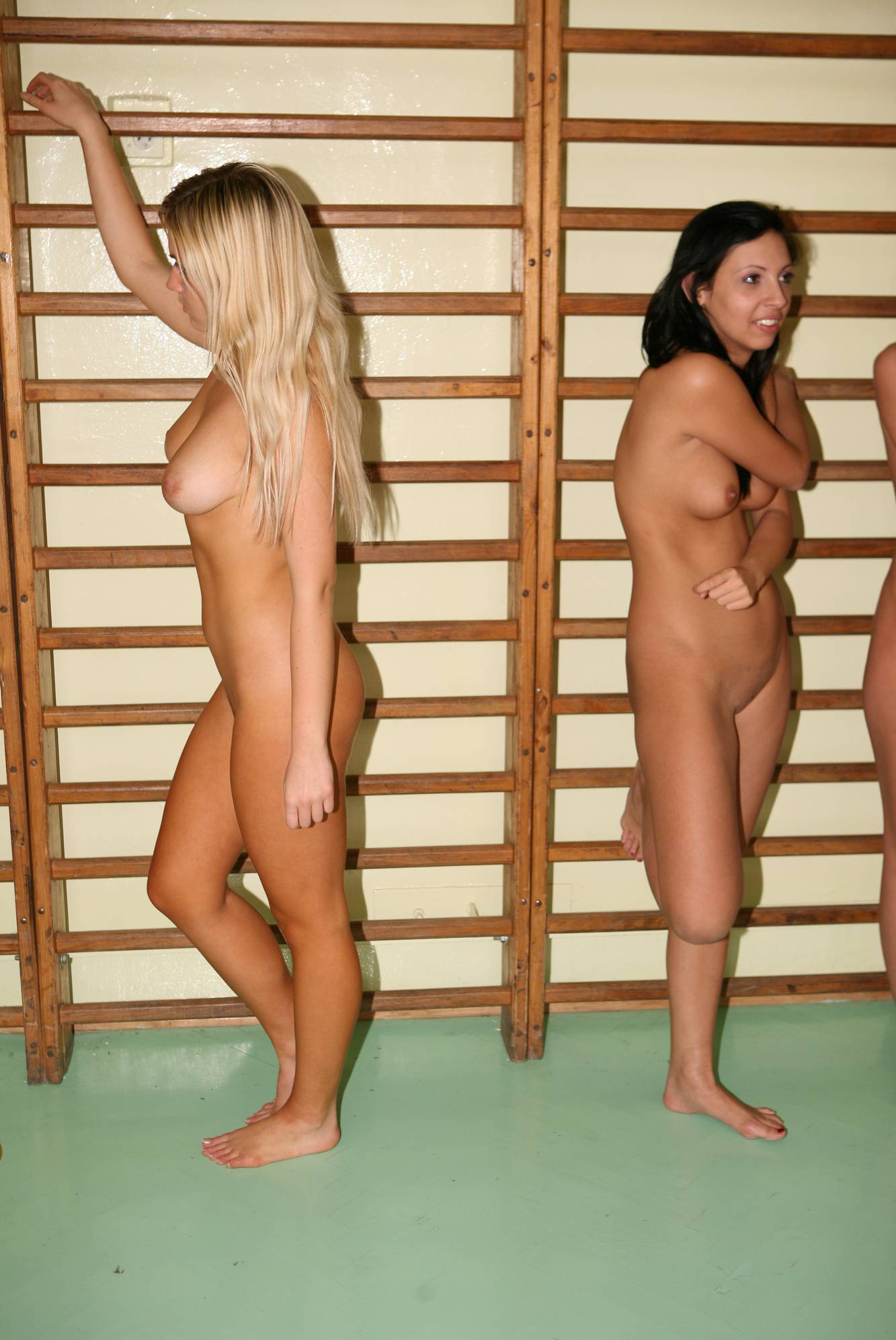 Pure Nudism Gallery-Gym Latter-Wall Profiles - 1