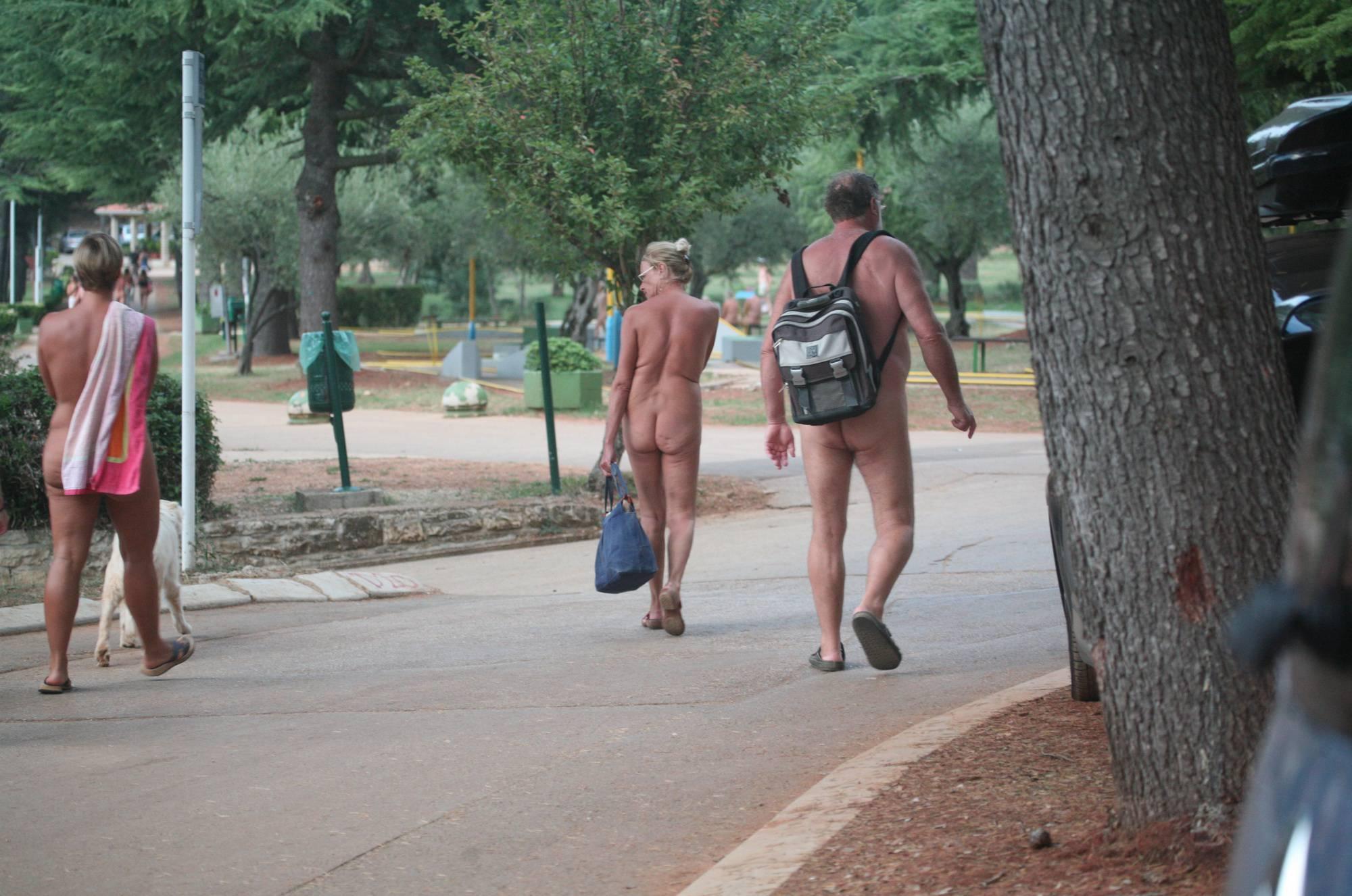 Purenudism Pics-Nude Road Crossing Cuts - 1
