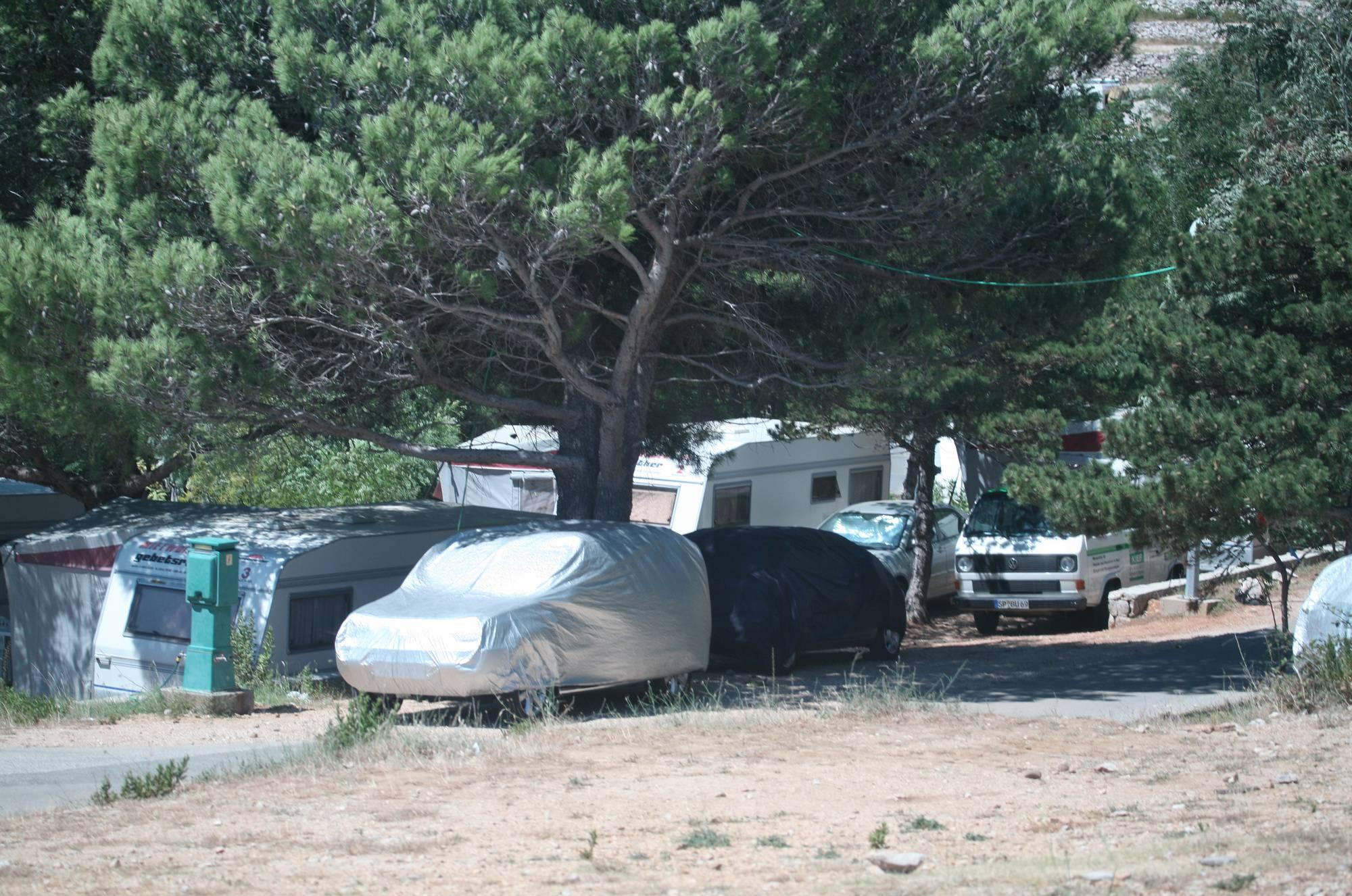 Sunnyside Camp Scene - 1