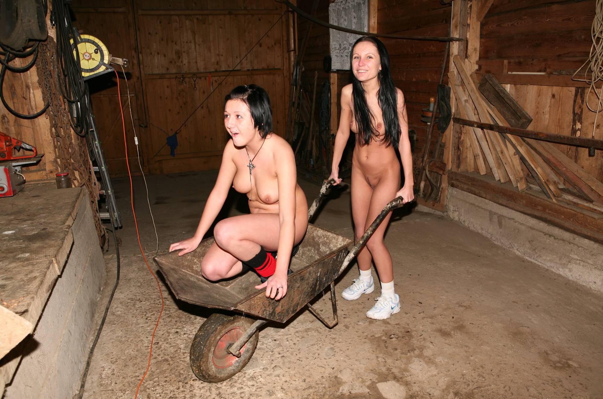 Farm Life Wheely Barrow - 4