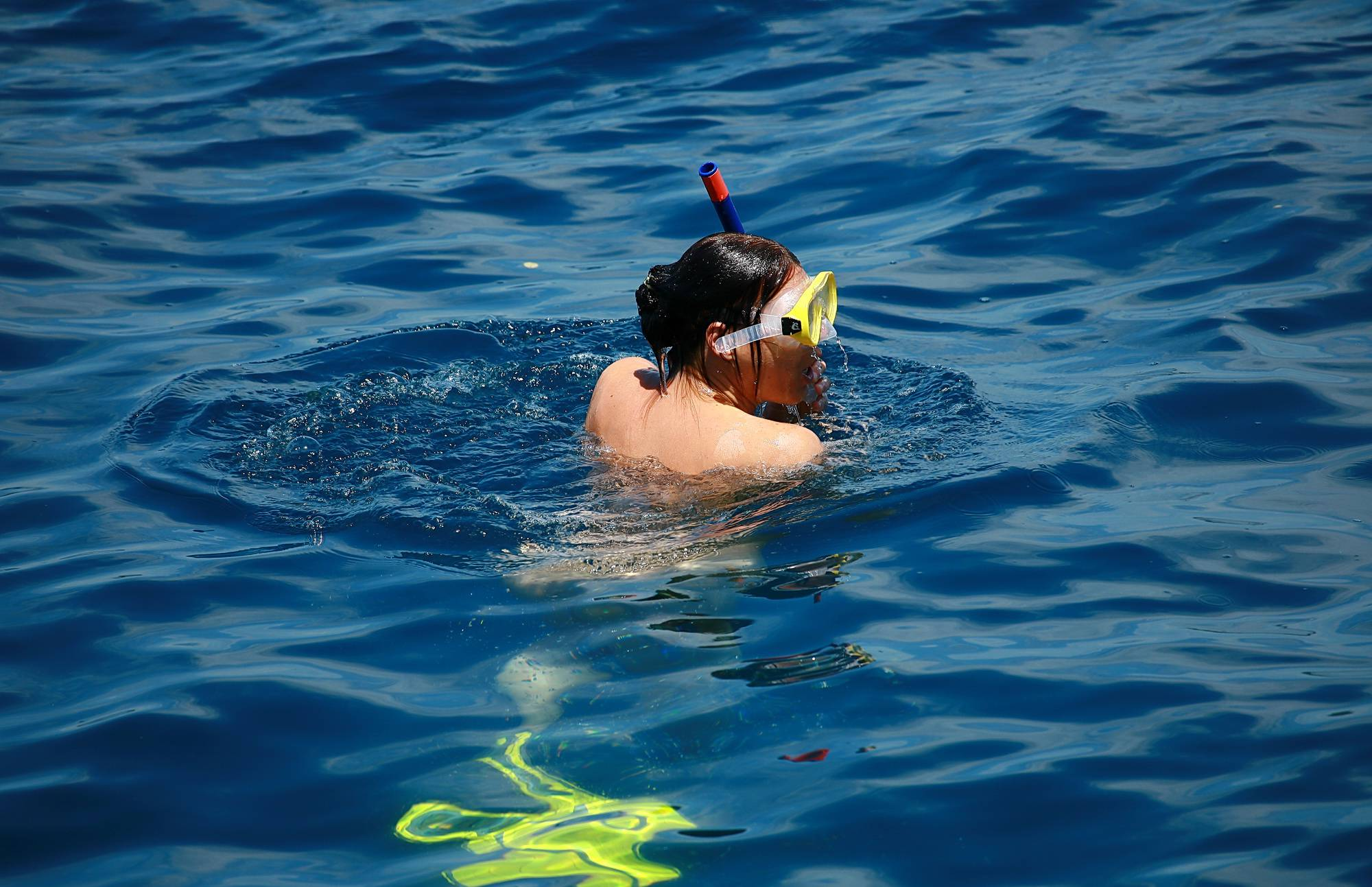 Purenudism Gallery-Snorkeling and Day Boats - 3