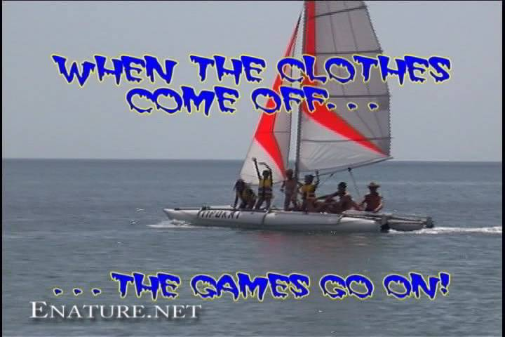 Enature When The Clothes Come Off The Games Go On! - Poster